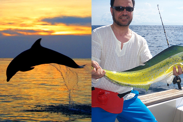 Surya Water Sports - Dolphin - Fishing Tour