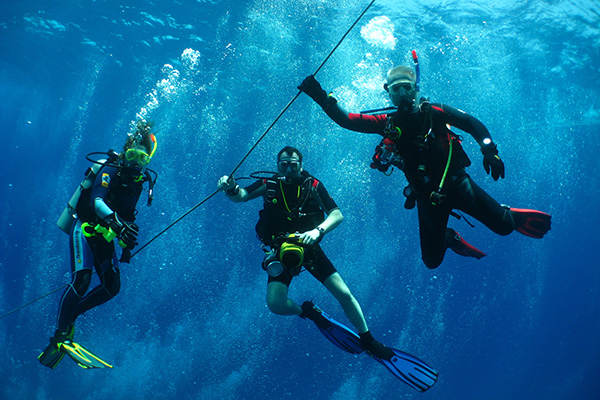 Surya - Bali Scuba Diving Courses